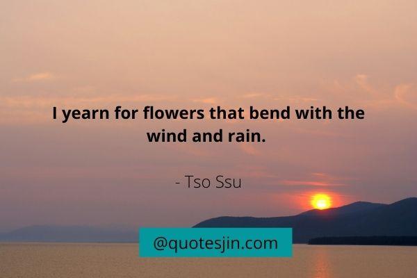 rain quotes (2)