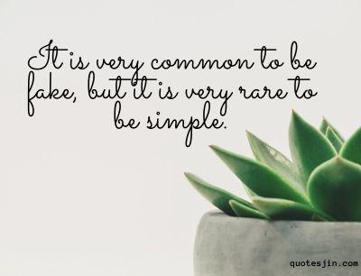 short quotes & simple quotes